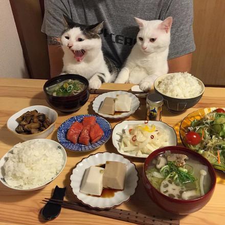 吃饭的搞笑说说