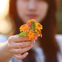 女人拿花头像图片