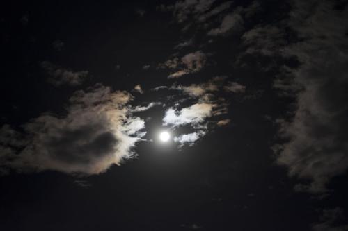 描写黑夜的优美句子