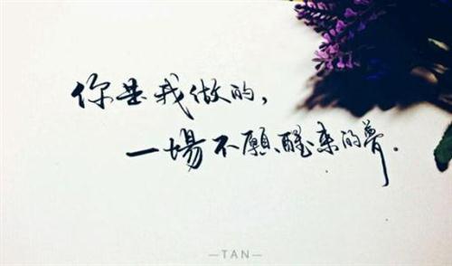 有关爱情的优美句子