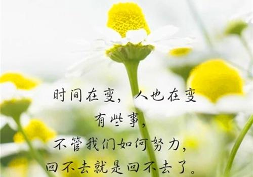 人生感言的句子说说 经典人生句子说说心情