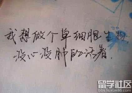 经典签名句子