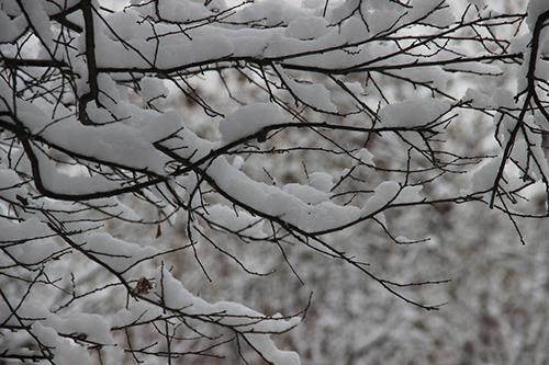 冬至祝福语大全