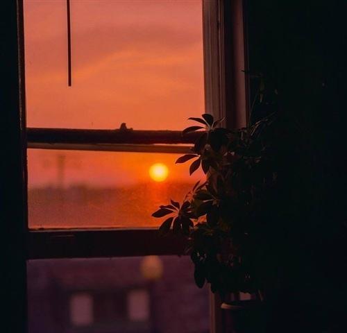 安静独处经典句子 一个人安静淡然句子
