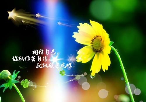 笑对人生的句子 鼓励人笑对生活的句子
