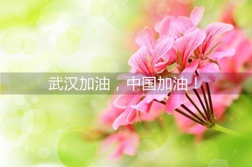 祖国加油武汉加油的说说 武汉加油的句子朋友圈微博说说
