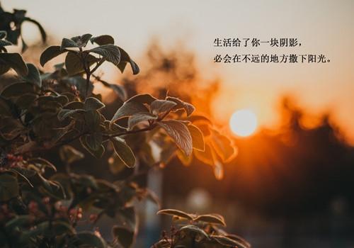 活在当下的句子 珍惜当下的唯美句子