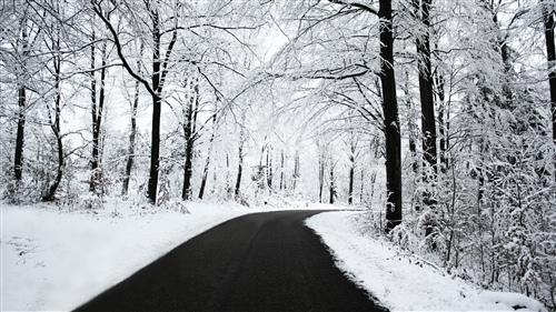 冬天被子睡不热的说说