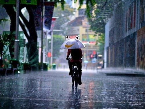 关于雨的唯美诗句或句子