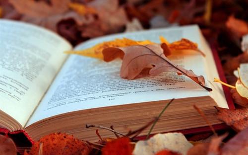 鼓励孩子爱阅读的名言名句